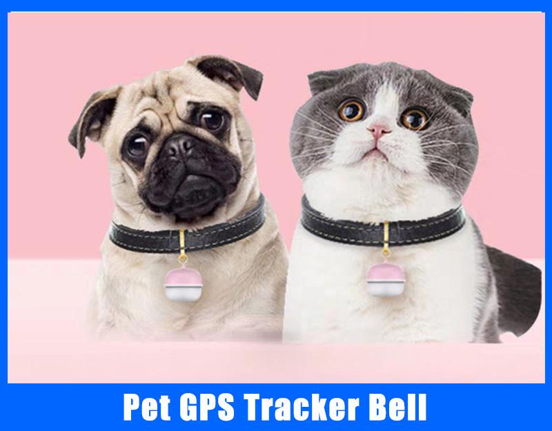 pet gps tracker bell