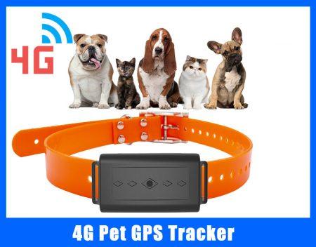 4g pet gps tracker