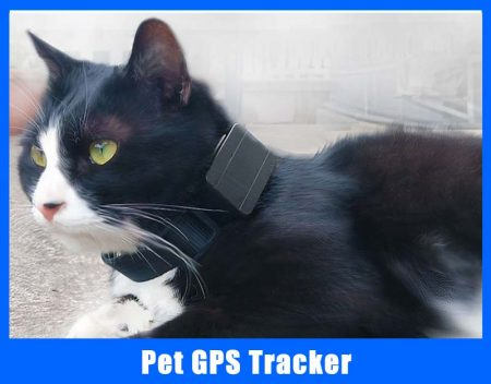 Pet Tracker GPS
